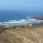 Sandymount to Sandfly Bay