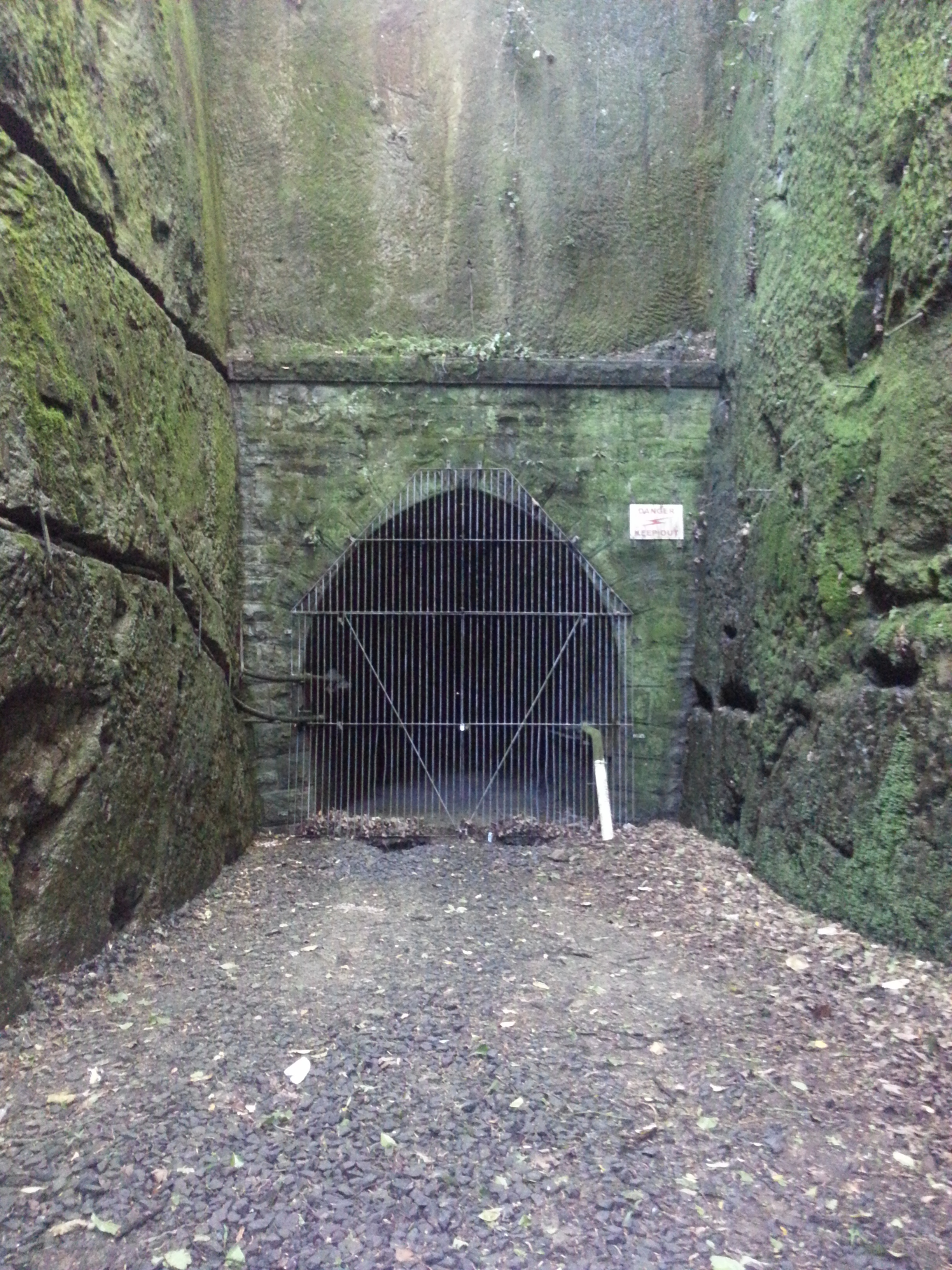 Caversham's Hidden Tunnel