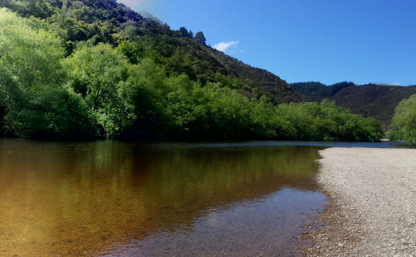Sunday Fishing at Outram Glen
