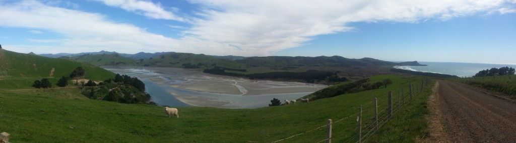 Looking back down on Papanui Inlet, with Victory Beach on the right