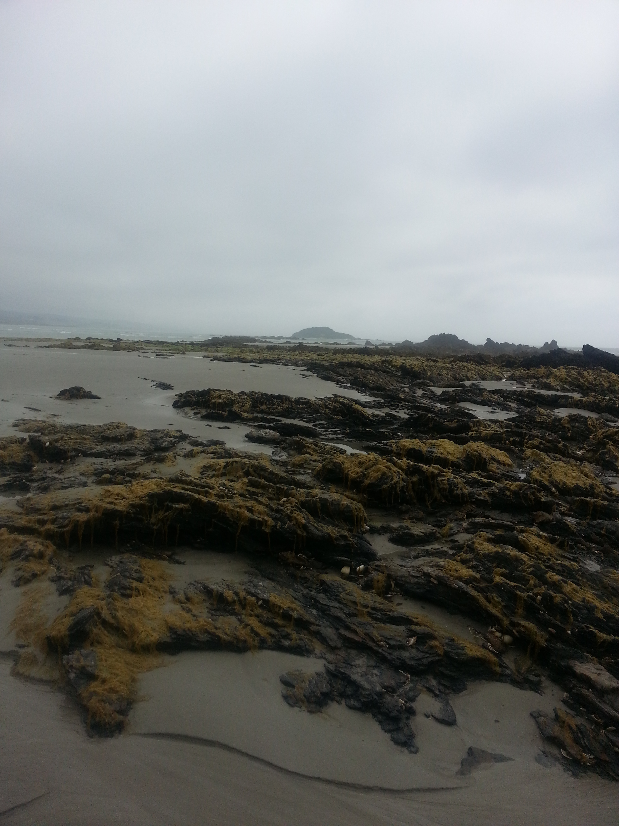 Taieri Mouth Coastal Walk