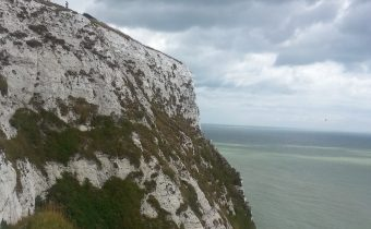 A Kiwi Bird Over the White Cliffs of Dover