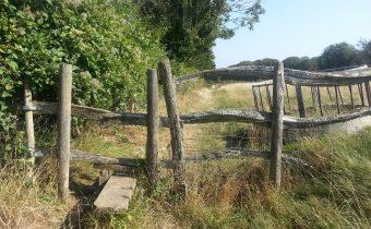 A Pilgrim's Progress from Shepherdswell to Dover