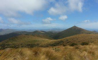 Hokonui Hills, Ho!