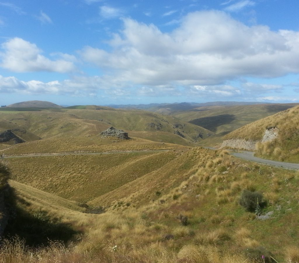 The hills of Otago