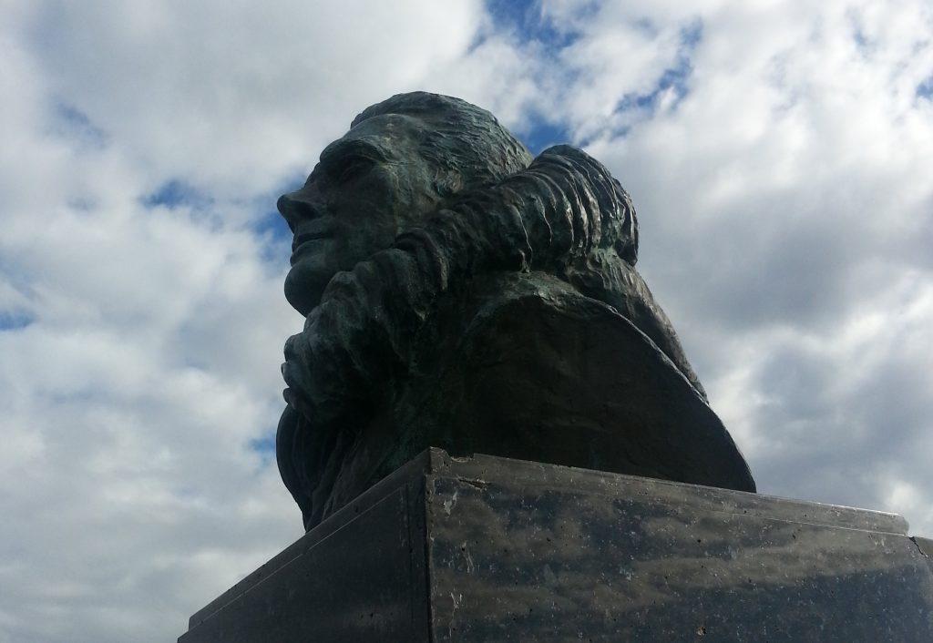 Admiral Byrd gazes over Dunedin