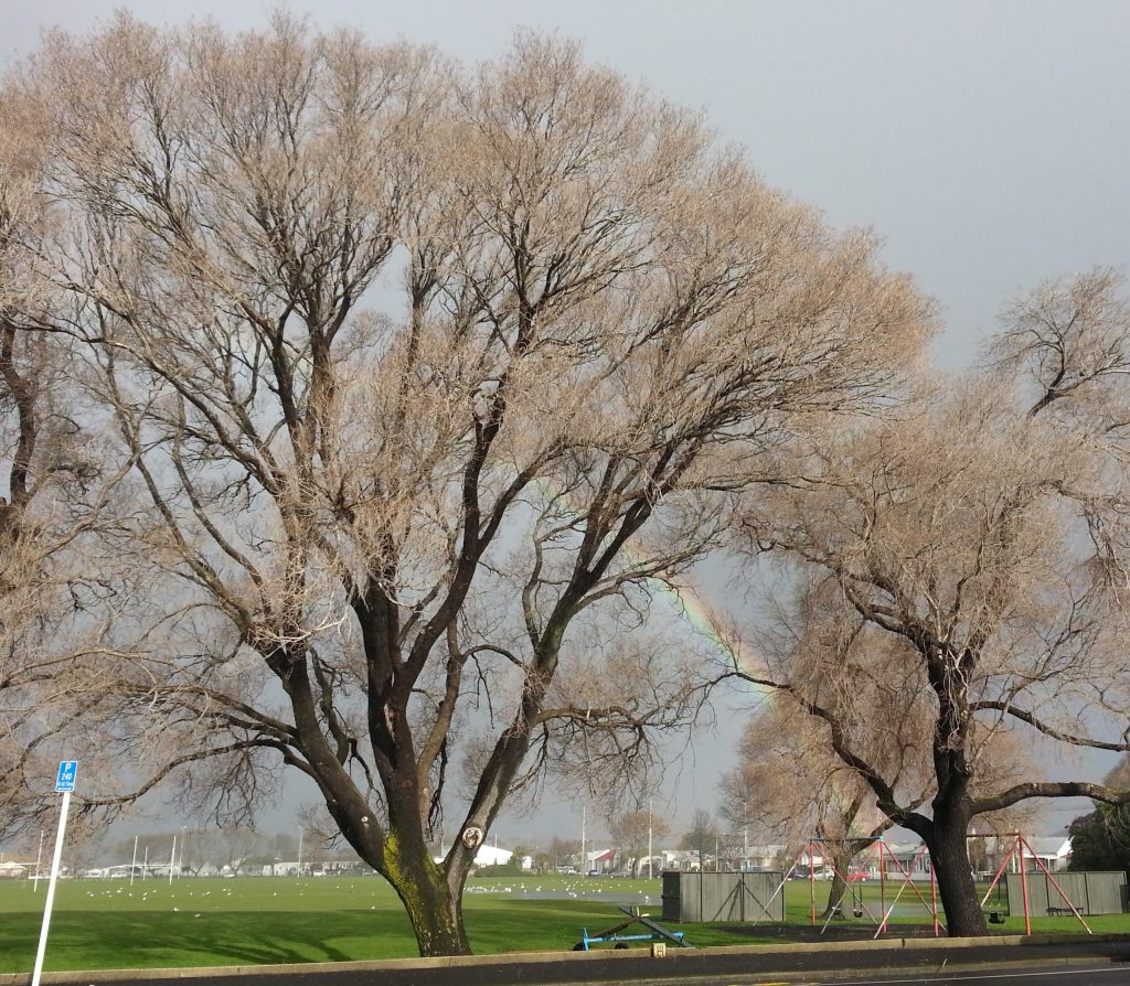 Rainbow over South Dunedin