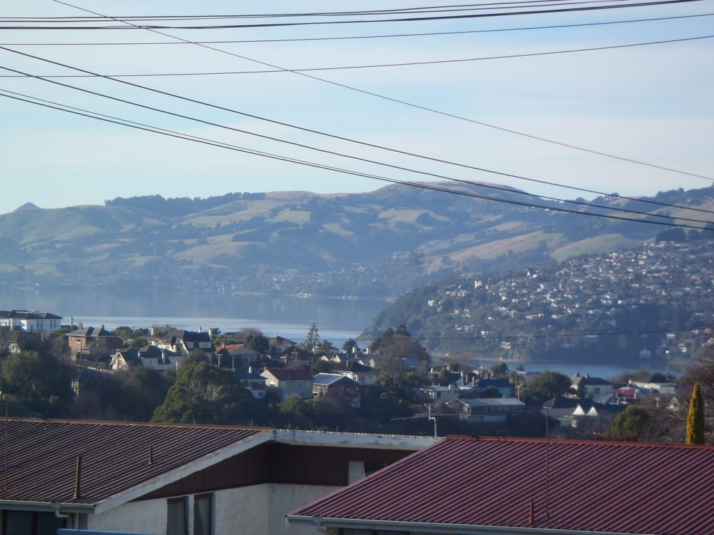 Otago Harbour from Maryhill