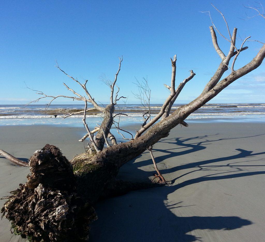 Brown waves beyond the flotsam