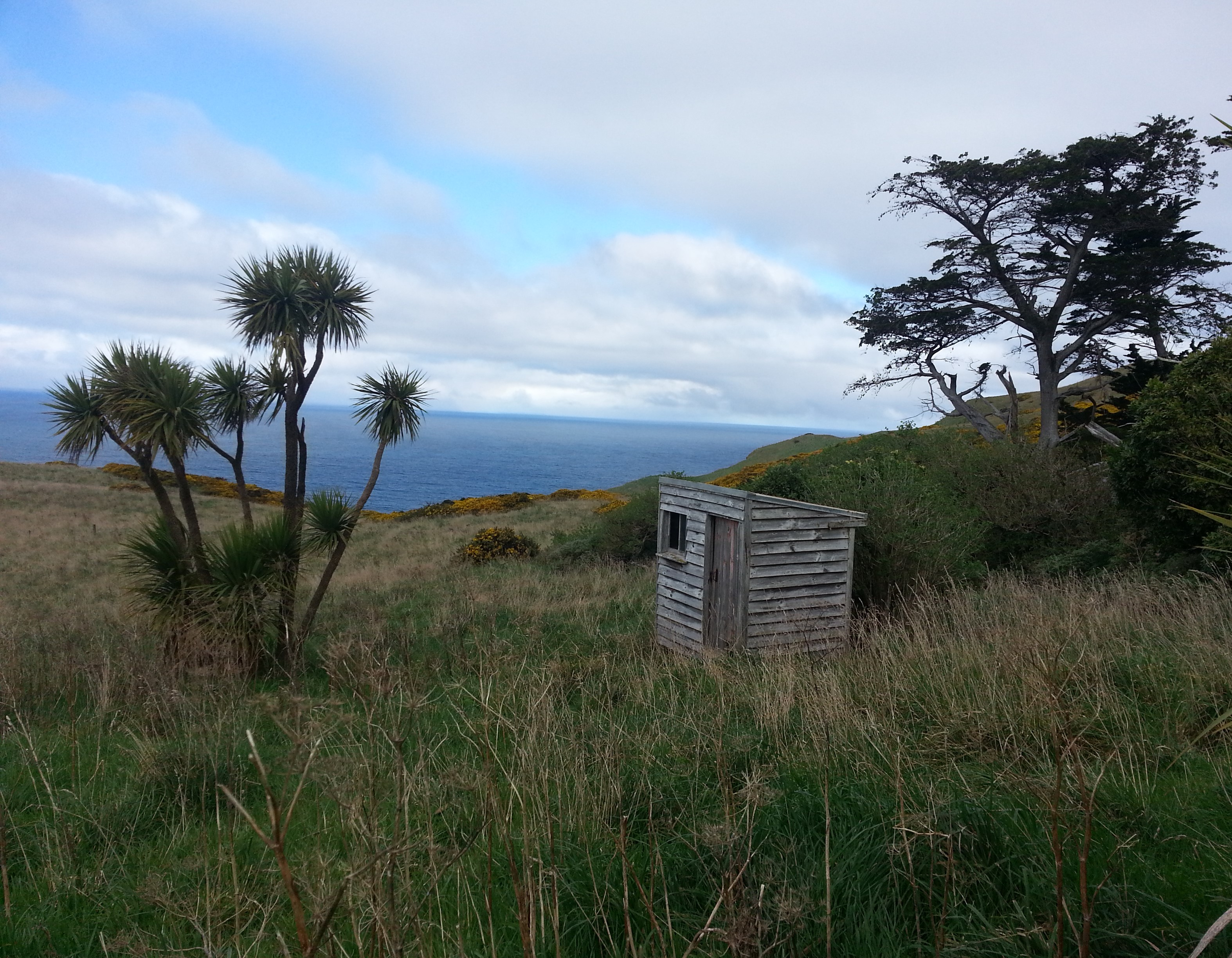 Buskin Track, Inglis's Hut, and Shand's Estate