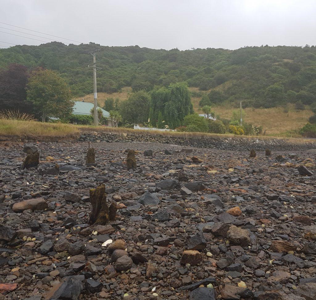 Piles at Deborah Bay