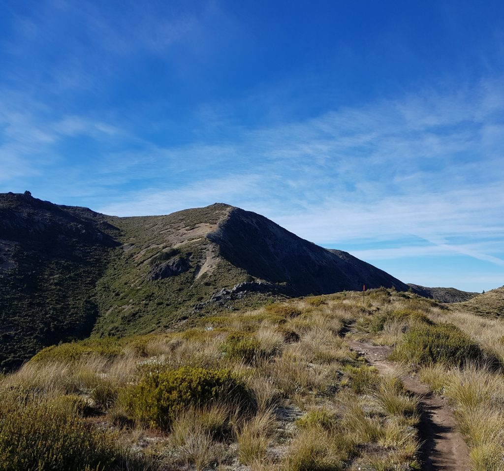 Mount Isobel track