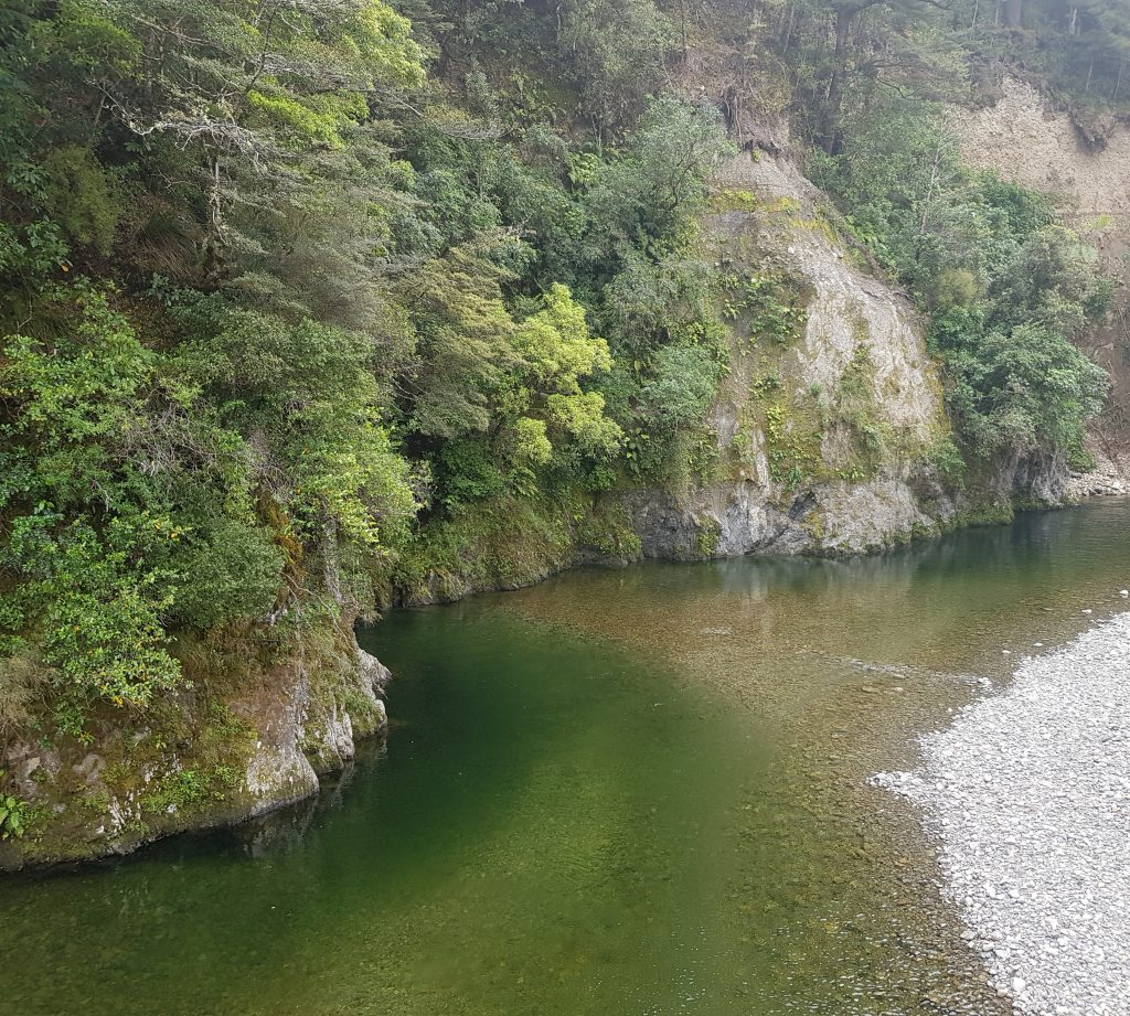 The Hutt River at Pakuratahi Forks