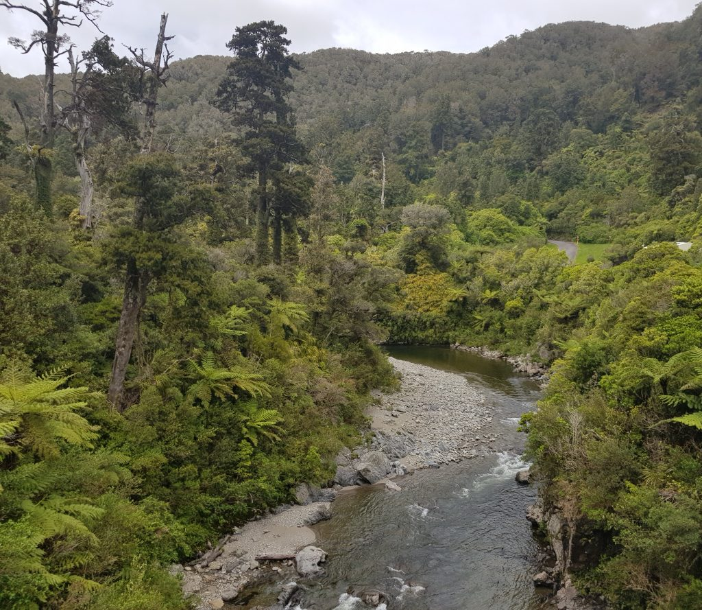 Looking upstream from the Kaitoke flume bridge