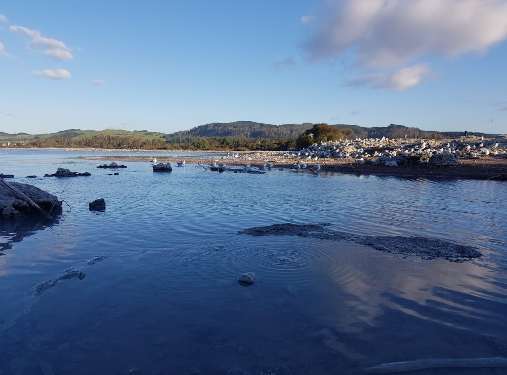 Sulfur Bay, Rotorua