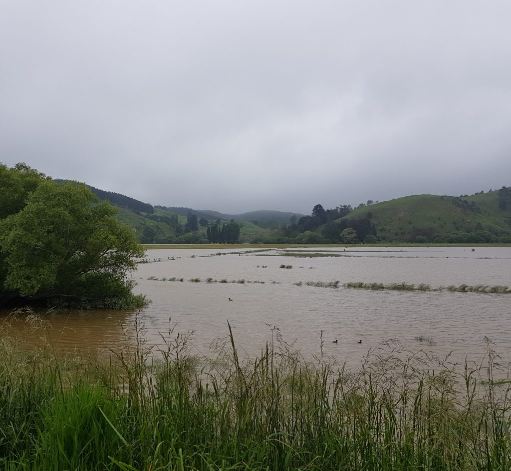 The Taieri Plain in flood