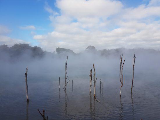 Bay of Plenty - Rotorua