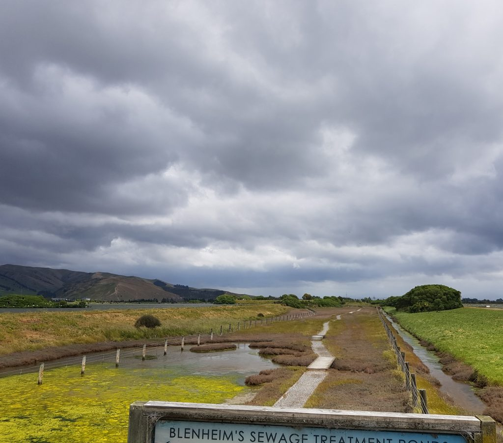 Entry to the Wairau Lagoon walk