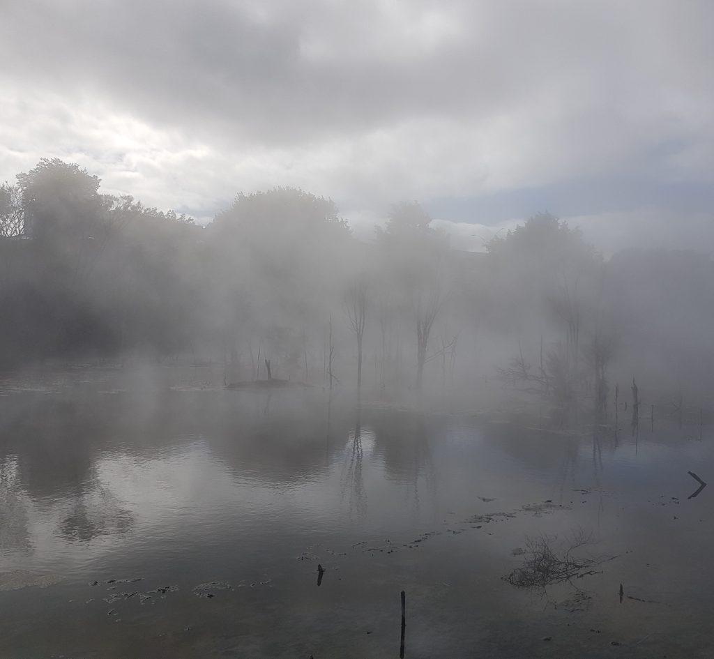 Kuirau Lake