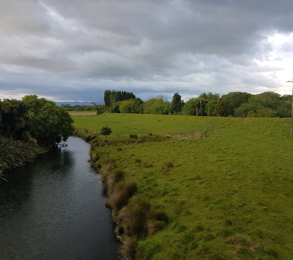 Tuamarina Stream