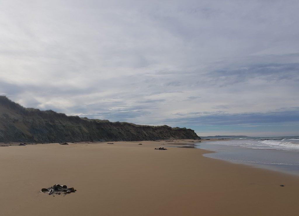 Waipapa Beach