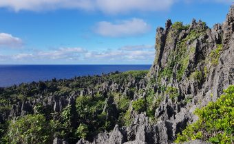 Chasms and Caves of Niue
