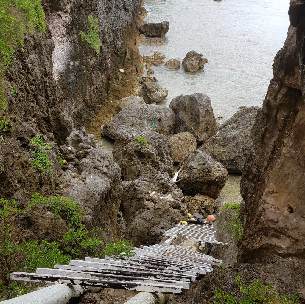 Ladder on Motu Sea Track
