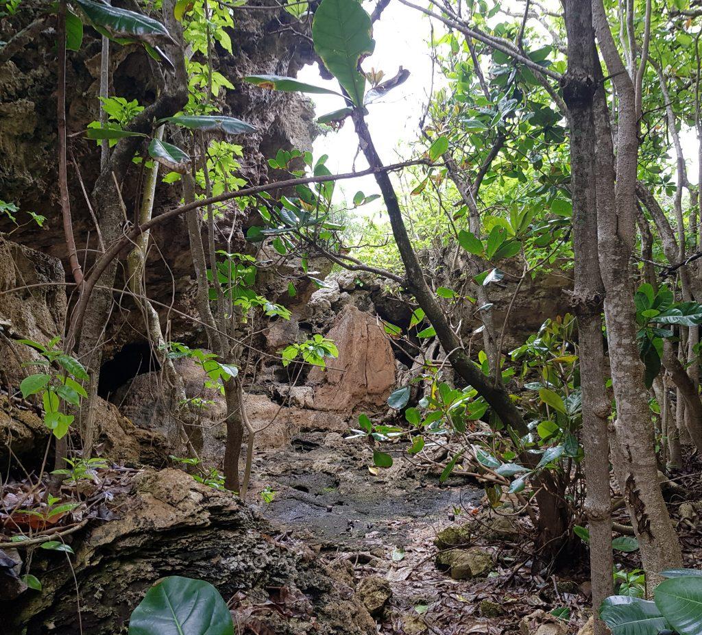 Motu sea track, Niue